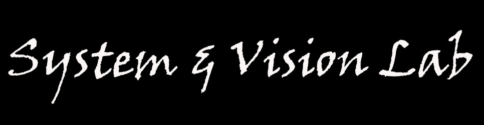 System & Vision Lab